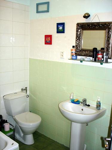 branik07_bathroom